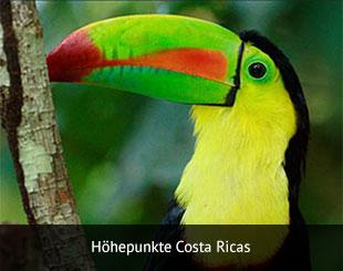reisebild_hoehepunkt-costa-rica